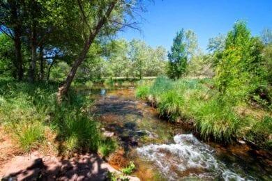 Oak Creek in Sedona